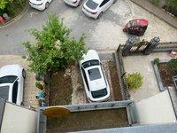 敬亭山君別墅出租 有車位 有院子 超大廳 低價出租 有鑰匙隨時看房