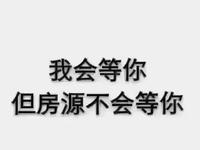 桂花园 4761单价 毛坯 无税 户型漂亮 采光好 四小学区 大学城